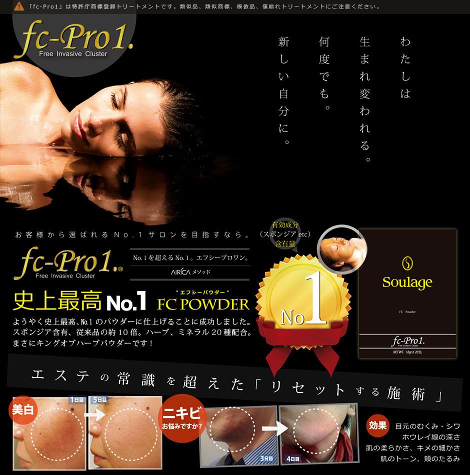 fc-Pro1(エフシープロワン
